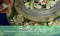 Glitzerpuder NEU silber AF 10 g Puder in der Pumpflasche