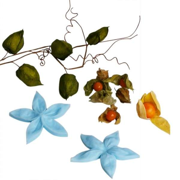"Veiner ""Lampionblume Blütenblatt"" ca. 11 x 11 cm ( Chinese Latern,Petal)"