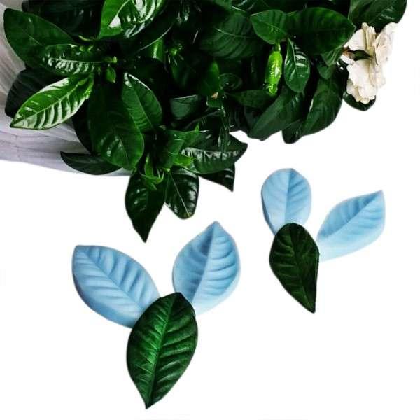 """Veiner """"Gardenie Blatt S+M"""" (Gardenie leaf S+M ) ca.6,0 x 2,4cm und 4 x 8,5cm"""