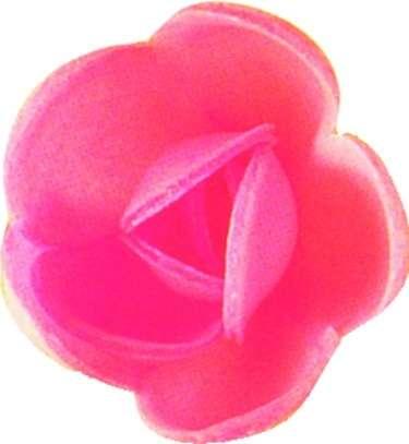 Esspapier Rose mittel pink 40mm 72 Stck