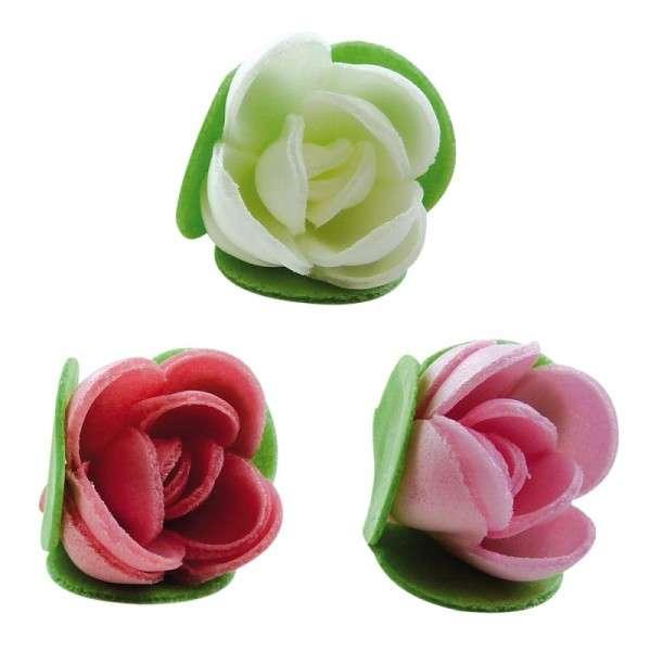 Esspapierblüten Rosen geschlossen